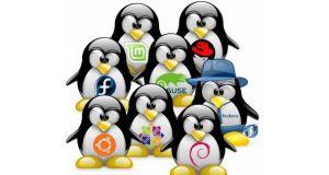 linux-dagitimlari-indir