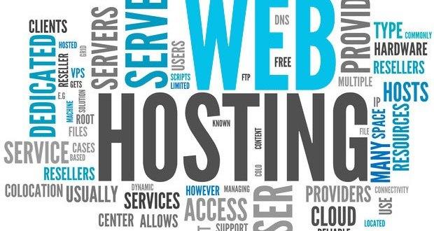 Web hosting nedir