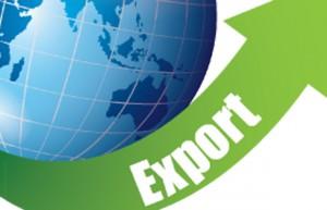 import_export-copy
