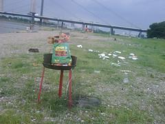 Idioten sollten nicht am Rhein grillen dürfen