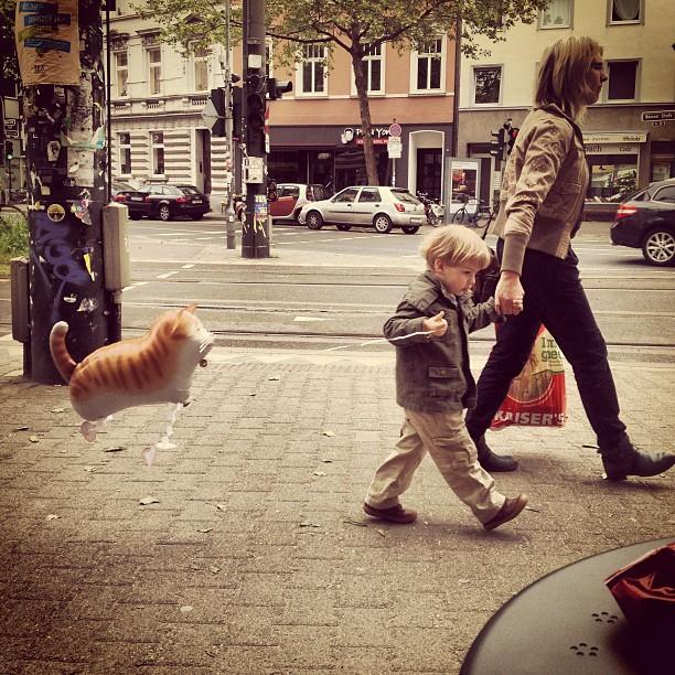 """""""Gassi gehen mit Katze """" – Straßenszene in Bilk :-)"""