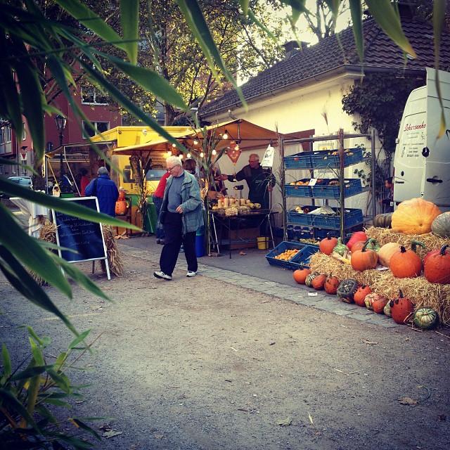 Heute ist übrigens auch Erntedankfest auf dem Bauernmarkt / Friedensplätzchen.