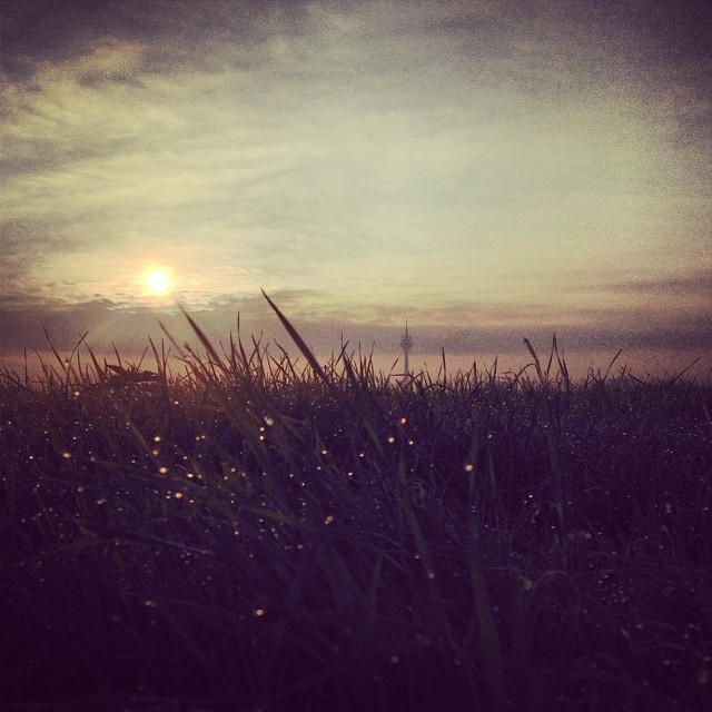 """Morning has broken, like the first morning..."" Trällerte er vor sich hin ;-)"