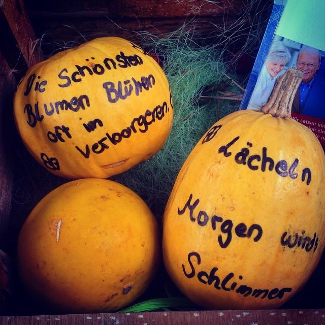 Der Herbst Scheint Wohl Die Zeit Der Sinnsprüche Zu Sein ; )