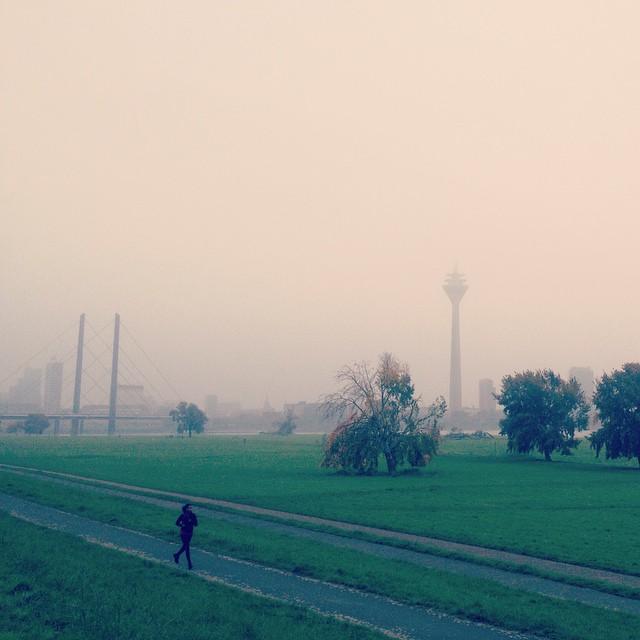 ... und dies ist die tristere Version des Herbstes ;-)