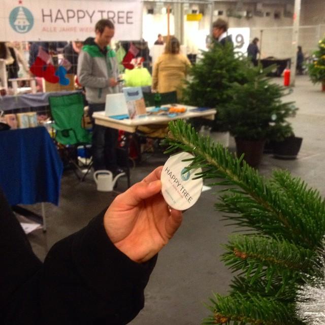 """""""Happy Tree"""" – ein Tannenbaum der wieder eingepflanzt wird."""