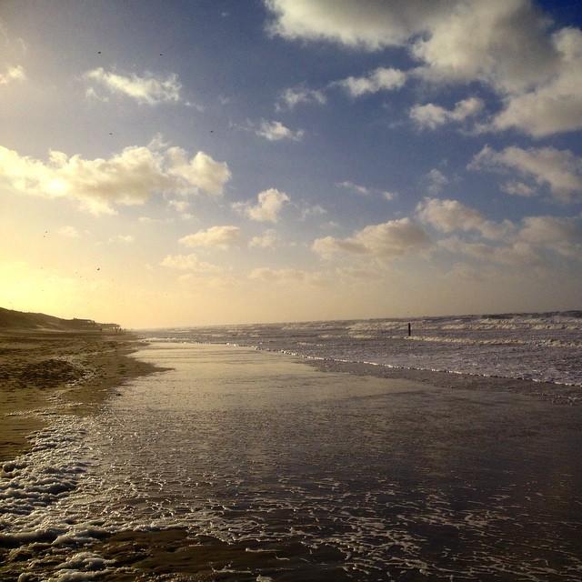 Heute bleiben die Strandläufer unter sich :-)