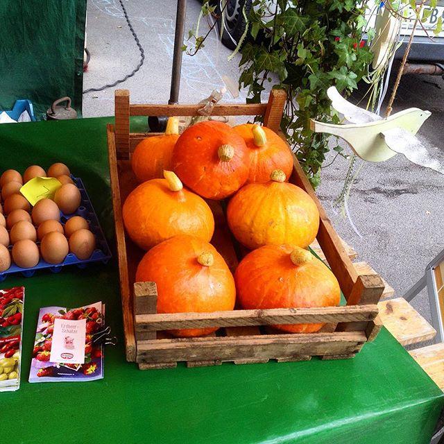 Oha... es gibt schon Kürbisse - also konkret Hokkaidos - auf'm Markt?!
