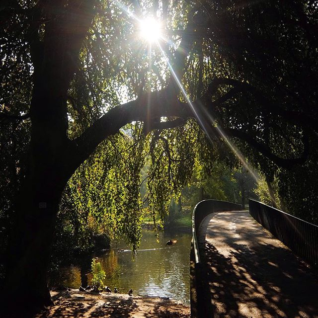 Erst mal eine kleine PostBrunchRunde um den Teich drehen...