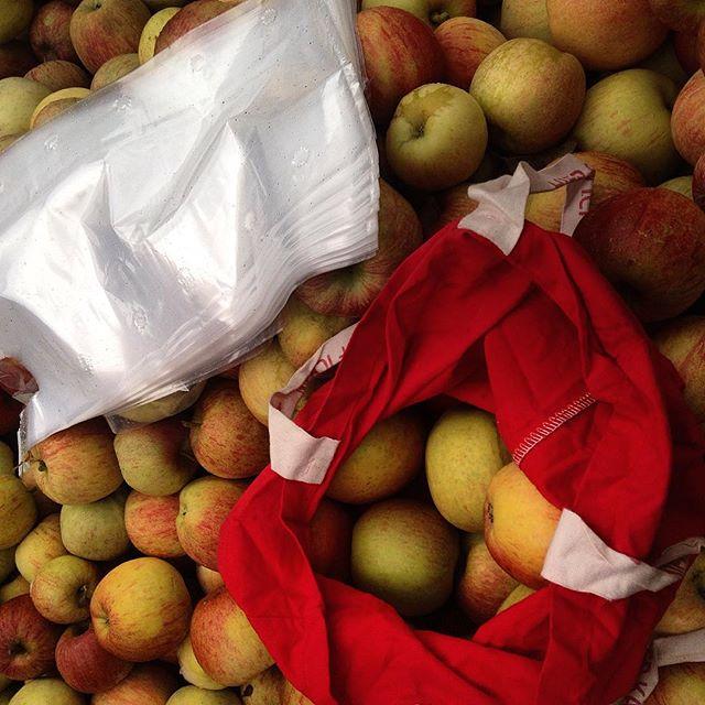 Eigentlich könnte man doch auf diese vielen Plastiktüten auf einem regionalen Bauernmarkt (der sich der Agenda 21 verschrieben hat) verzichten...