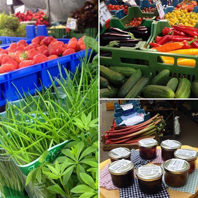 Ab auf'n Markt am Friedensplätzchen und frische Kräuter, Spargel, Mairübchen, Salat und Marmelade kaufen. Die ersten Erdbeeren aus dem Freiland kommen nächste Woche - freuen uns schon drauf :-)