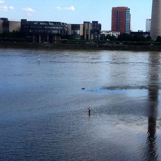 Sieht schon sehr idyllisch aus – so ein Fliegenfischer im Rhein :-)