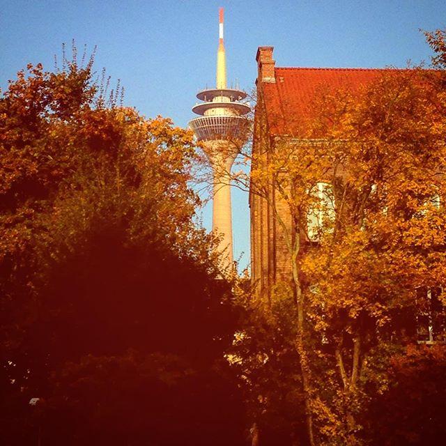 Auf einen schönen & bunten Herbsttag