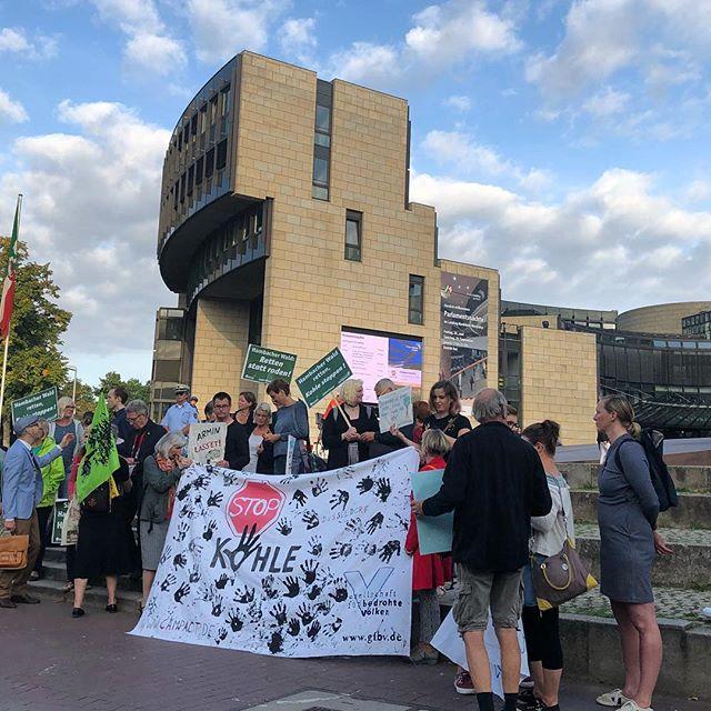 500.000 Menschen sind gegen die Rodung des Hambacherwaldes