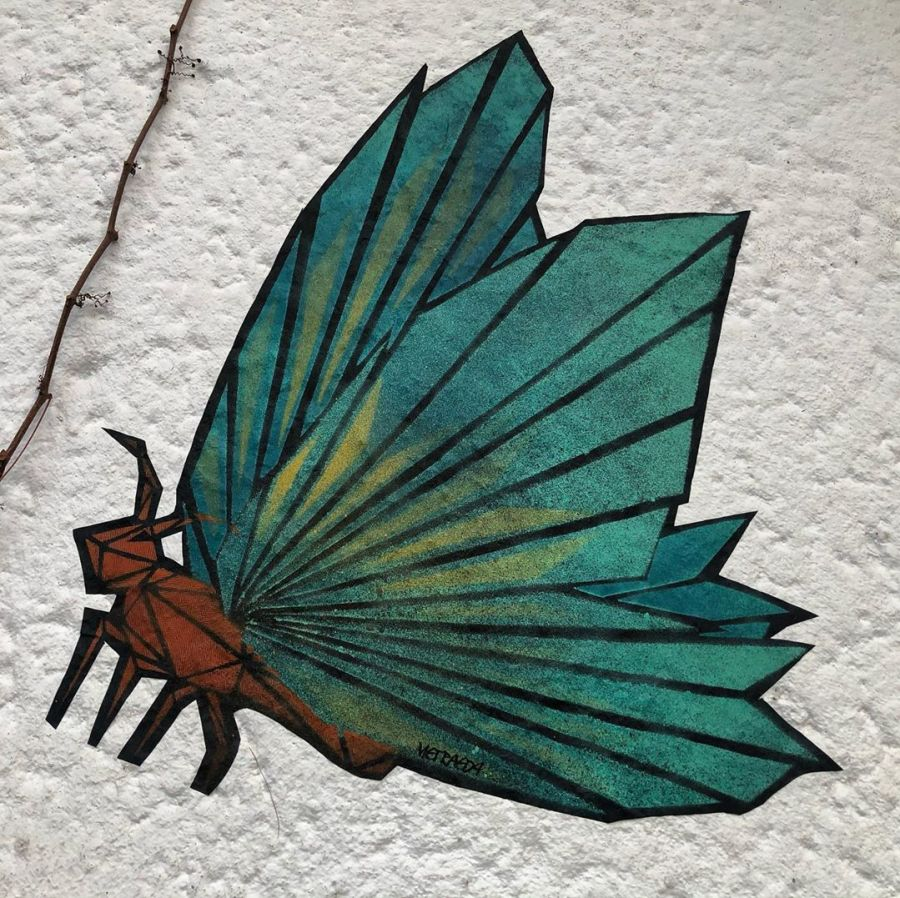Die Saison ist eröffnet ;-) die ersten Schmetterlinge sind bereits unterwegs. Danke @metraeda für den Besuch