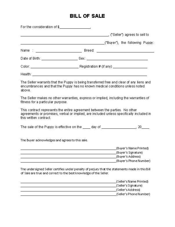 Massachusetts Puppy Bill of Sale Form