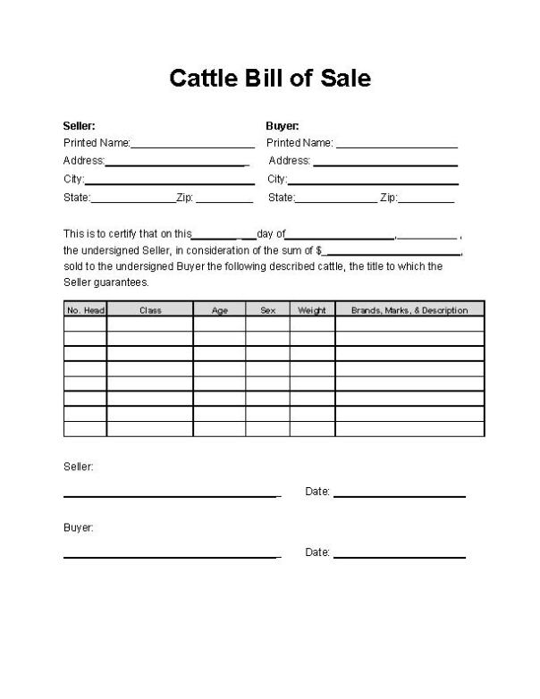 Cattle Bill of Sale Form