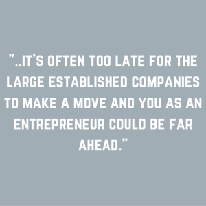 %22..it's often too late for the large established companies to make a move and you as an entrepreneur could be far ahead.%22