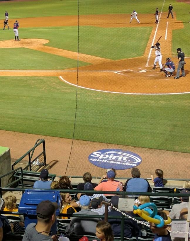 riverdogs baseball game