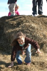 Jumping of the Haystack