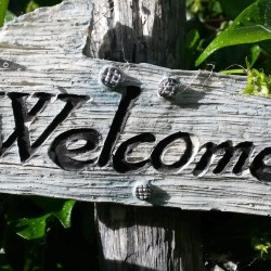 Welcome to my blog! (Image courtesy of pixabay.com)