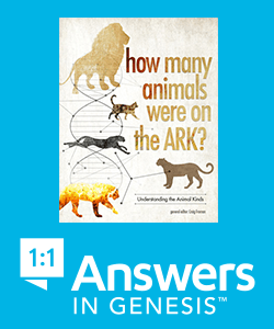 How many animals were on the Ark? AIG Link