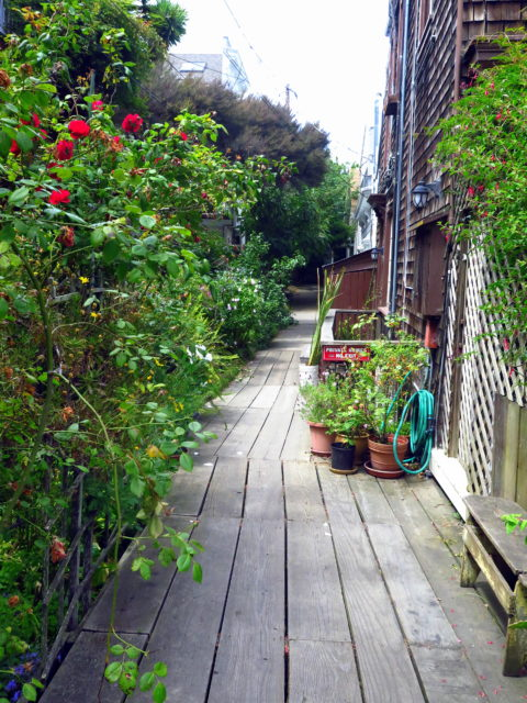 The planks that comprise Napier Lane. Napier Lane is lined with 19th-century cottages. San Francisco, United States, North America.