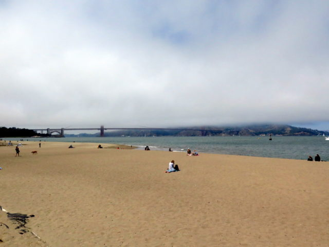 From the beach at Crissy Field, it looks like the fog has sliced off the Golden Gate Bridge's towers. San Francisco, United States, North America.