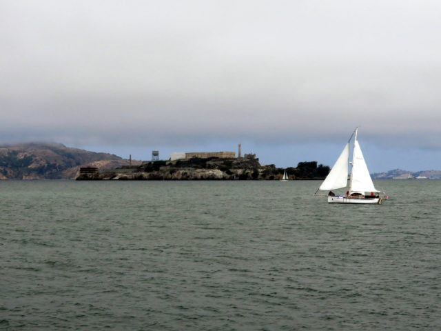 Hey, we were just there! A sailboat passes by Alcatraz, seen from Municipal Pier. Municipal Pier, an extension of Van Ness Avenue, juts out into the bay at San Francisco Maritime National Historical Park. Alcatraz, San Francisco, United States, North America.