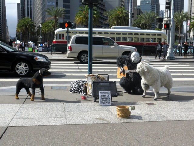 Out in front of the Ferry Building, I couldn't resist getting a picture of Classical Guitar Jukebox Monkey and his inanimate pets. San Francisco, United States, North America.