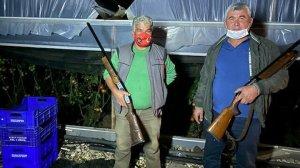Antalya haberleri: Domatesin fiyatı artınca seralara dadanan hırsızlar için silahlı nöbet tutuyorlar