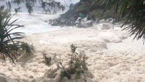 Avustralya sahilleri okyanus köpüğüyle doldu