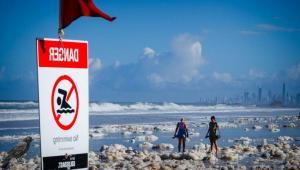 Avustralya'da okyanus köpüğünden zehirli deniz yılanı çıkabilir uyarısı