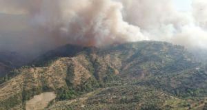 Aydın'da yangın: 140 hektar zirai alan zarar gördü