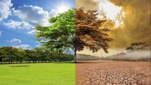 Birleşmiş Milletler: Küresel ısınma 3 derecenin üzerine çıkacak