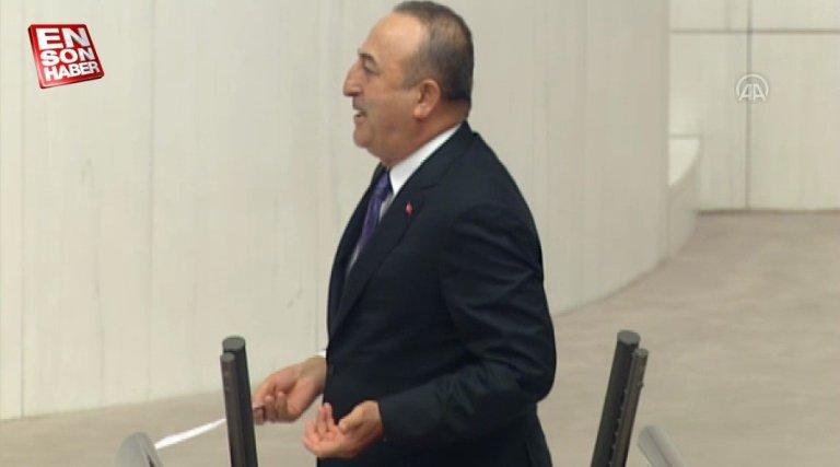 Çavuşoğlu'ndan İyi Partili Erozan'a: Darbe beklentiniz mi var