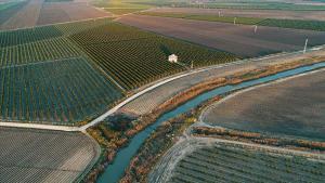 DSİ 4 ilde yaklaşık 30 bin hektar alanda arazi toplulaştırması yaptı