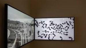 İstanbul Bienali, sanatçıların video işlerini online erişime açıyor