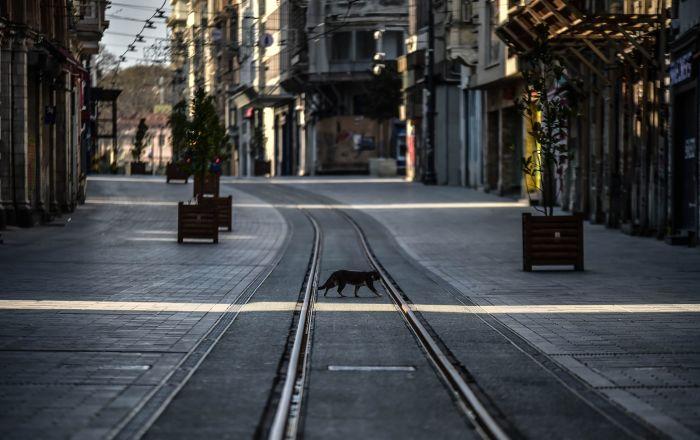 Sokağa çıkma yasağı getirilen şehirlerde sokaklarda sessizlik hakim