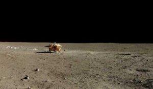 Ay'dan getirilen pirinçler filizlenmeye başladı