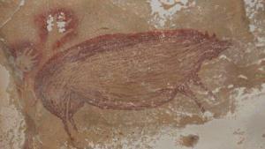 Bilim insanları Endonezya'da dünyanın bilinen en eski mağara resimlerini buldu!