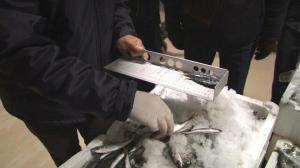 İstanbul'da balık tezgahlarına ceza yağdı: 1 ton balığa el konuldu