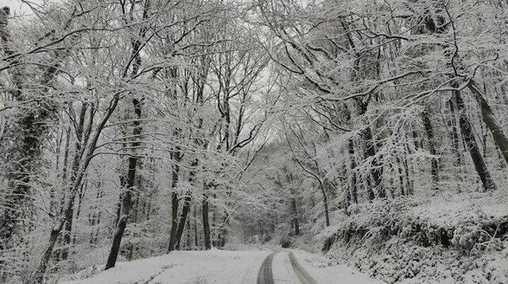 Kartpostal gibi: Belgrad Ormanı'nda eşsiz kar manzaraları