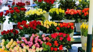 Çiçekçiler rekor kırıyor! Yalnızca Sevgililer Günü için 7 milyon dolar kazandılar