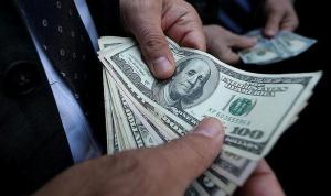 Özel sektörün uzun vadeli yurtdışı kredi borcu ne kadar oldu?