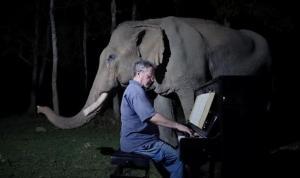 Paul Barton'dan filler için klasik müzik dinletisi