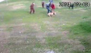 Pitbull saldırısı kamerada! Dehşet görüntüler