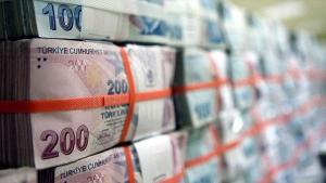 AG Anadolu Kümesi Holding'den 70 milyon liralık satış