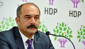 Papa Pulu'na HDP sahip çıktı