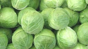 Diyetinize ekleyebileceğiniz yüksek proteinli 10 sebze